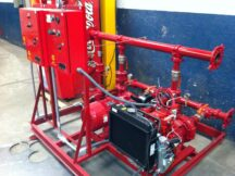 PICSA Mexico - LPW2 Back Up Powered Fire Pump (1)